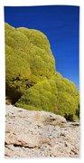 Bizarre Green Plant Bolivia Bath Towel