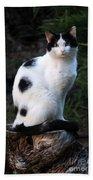 Black And White Cat On Tree Stump Bath Towel
