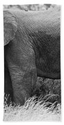 Black And White Elephant Bath Towel