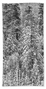 Black And White Trees In A Forest Bath Towel