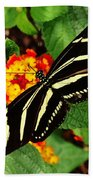 Black And Yellow Butterfly Bath Towel