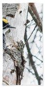 Black-backed Woodpecker Bath Towel