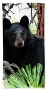 Black Bear 1 Hand Towel