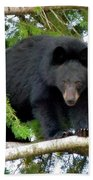 Black Bear 2 Bath Towel