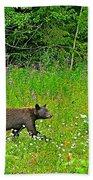 Black Bear Along Yellowhead Highway-bc Bath Towel