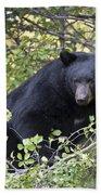 Black Bear II Bath Towel