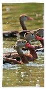 Black-bellied Whistling Ducks Bath Towel