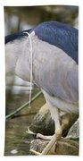 Black-crown Heron Going Fishing Bath Towel