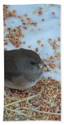 Black Eyed Junco Bath Towel