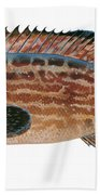 Black Grouper Hand Towel