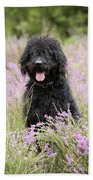 Black Labradoodle Bath Towel