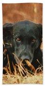 Black Labrador Bath Towel