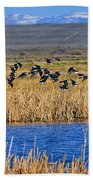 Black-necked Stilts In Flight Bath Towel