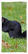 Black Squirrel Bath Towel