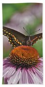 Black Swallowtail On Cone Flower Bath Towel