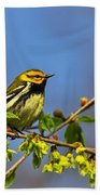 Black-throated Green Warbler Bath Towel