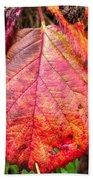Blackberry Leaf In The Fall 3 Bath Towel