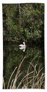 Blackwater River Pelican Bath Towel