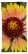 Blanket Flower Bath Towel
