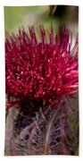 Blooming Spear Thistle Bath Towel