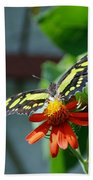Blooms And Butterfly2 Bath Towel