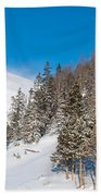 Blue And White Colorado Winter Bath Towel