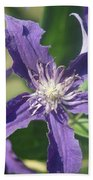 Blue Angel Clematis Close   # Bath Towel