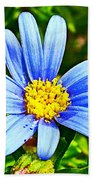 Blue Aster In Park Sierra Near Coarsegold-california   Bath Towel