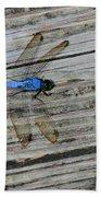 Blue Dragonfly Bath Towel