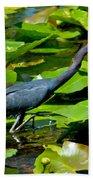 Reddish Egret Among The Lily Pads Bath Towel