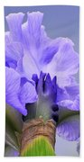 Blue Flamenco Bath Towel