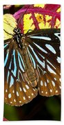 Blue Glassy Tiger Butterfly Bath Towel