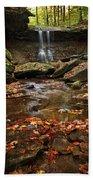 Blue Hen Falls In Autumn Bath Towel