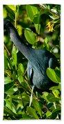 Blue Heron In Mangroves Bath Towel