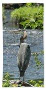 Blue Heron River Fishing  Bath Towel