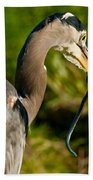 Blue Heron With A Snake In Its Bill Bath Towel