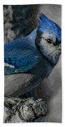 Blue Jay Painterly Bath Towel