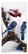 Blue Jays In Winter Bath Towel