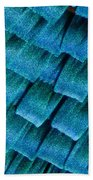 Blue Morpho Wing Scales Bath Towel