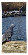 Blue Pigeon Bath Towel
