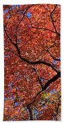 Blue Ridge Mountains Fall Foliage Bath Towel
