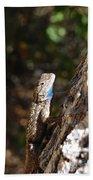 Blue Throated Lizard 4 Bath Towel
