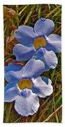 Blue Trumpet Vine In Manuel Antonio's Butterfly Botanical Garden-costa Rica Bath Towel
