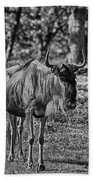 Blue Wildebeest-black And White Bath Towel