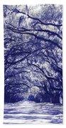 Blue World In Savannah Bath Towel