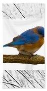 Bluebird In Prairie Frame Bath Towel