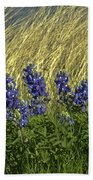Bluebonnets With Ladybug Bath Towel
