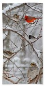 Blushing Red Cardinal In The Snow Bath Towel