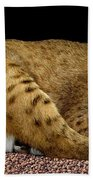 Bobcat Hand Towel