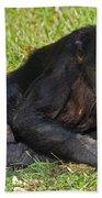 Bonobo Bath Towel